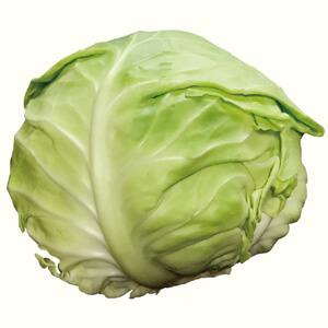 ごはんの栄養:ビタミンB1 0.03mg(キャベツの大きい葉と同じです)