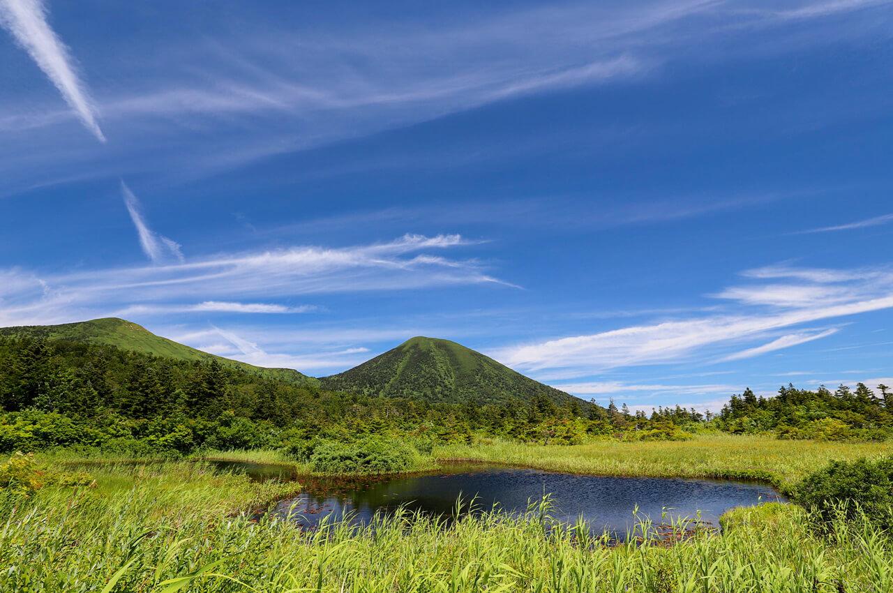 大地が育む「あおもり米」:森の恵み 十和田八幡平国立公園 八甲田連邦