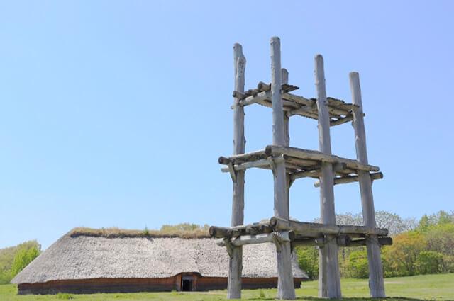 大地が育む「あおもり米」:森の恵み 三内丸山遺跡