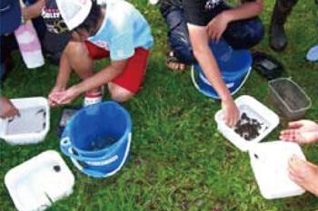 あおもり米:安全・安心な米作り 環境への調和
